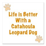 Catahoula Square Car Magnets