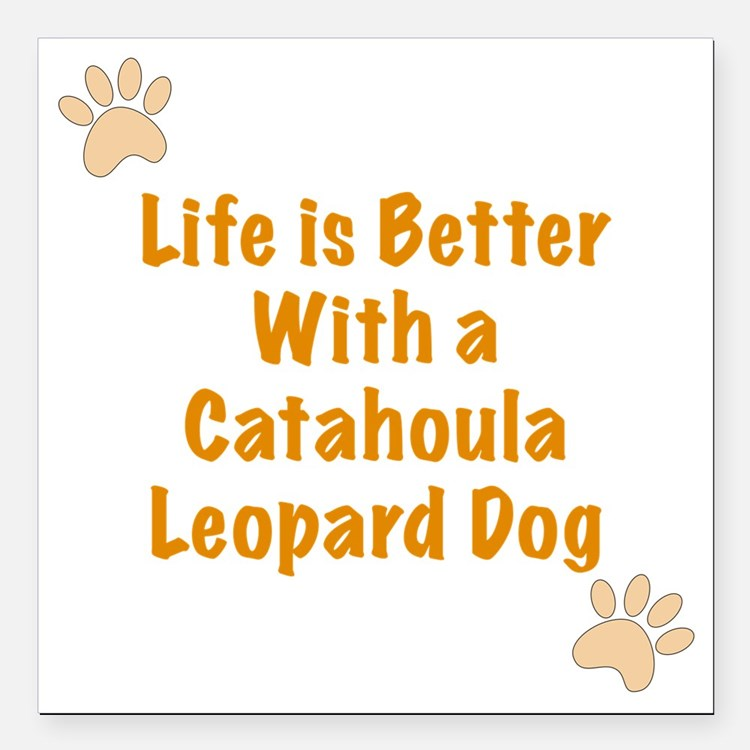 "Life is better with a Ca Square Car Magnet 3"" x 3"""