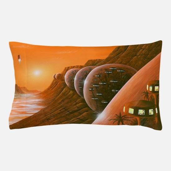 s6100153 Pillow Case