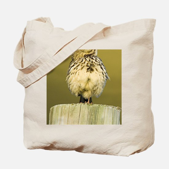 Meadow pipit Tote Bag