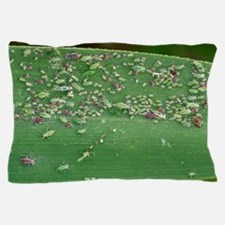 Mealy plum aphids feeding on a leaf Pillow Case
