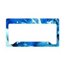 Medical nanotechnology, artwo License Plate Holder