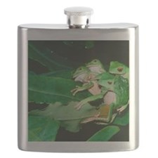 Mating green tree frogs Flask