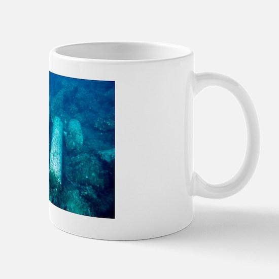 Marine archaeology Mug