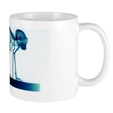 z9080016 Mug