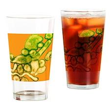 Avian influenza virus, TEM Drinking Glass