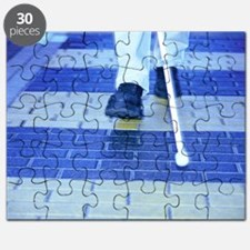 Blind man on a crossing Puzzle