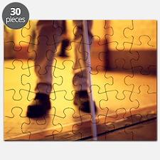 Blind man walking Puzzle