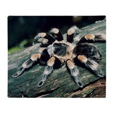 Mexican redknee tarantula Throw Blanket