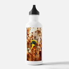 Medical nanotechnology Water Bottle