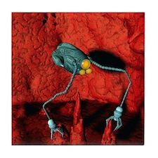 Medical nanorobot Tile Coaster