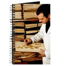 Botanical collection Journal
