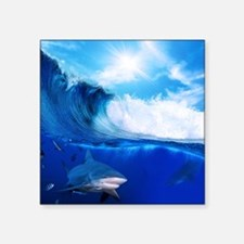 "Shark Wave Square Sticker 3"" x 3"""