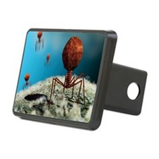 Bacteriophage viruses Hitch Cover