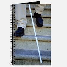 Blind man descending stairs Journal