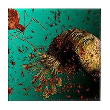 Bacteriophage viruses Tile Coaster