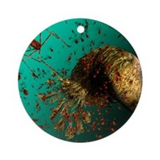 Bacteriophage viruses Round Ornament