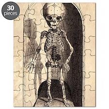 Skeletal Child Alcove Puzzle