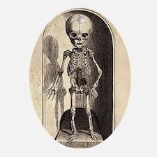 Skeletal Child Alcove Oval Ornament