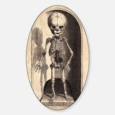 Skeletal Child Alcove Decal