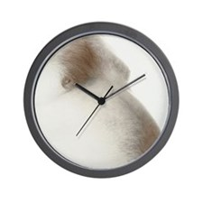 Bare abdomen of an obese man Wall Clock