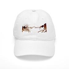 Mosquito heads, light micrograph Baseball Cap
