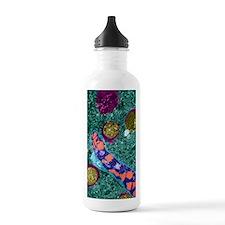 Brain inflammation, TE Water Bottle
