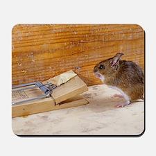 Mouse by a mousetrap Mousepad