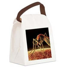 Mosquito sucking blood, computer  Canvas Lunch Bag