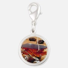 Model of the Mars Pathfinder r Silver Round Charm