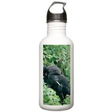 Mountain gorilla and i Water Bottle