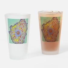 z1100189 Drinking Glass