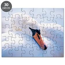 z8280266 Puzzle