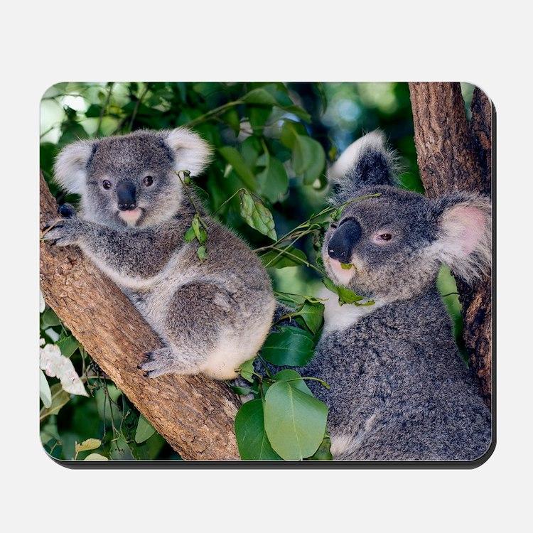 Mother koala and young Mousepad