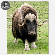 z9580083 Puzzle
