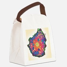 Naegleria fowleri protozoan, TEM Canvas Lunch Bag