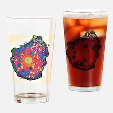 Naegleria fowleri protozoan, TEM Drinking Glass