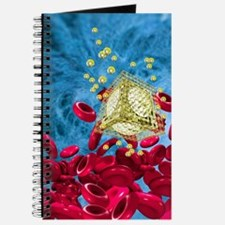 Nanorobot Journal