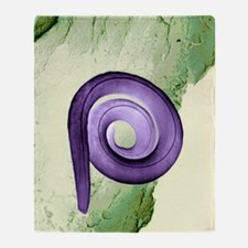 Nematode worm, SEM Throw Blanket