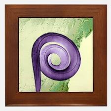 Nematode worm, SEM Framed Tile