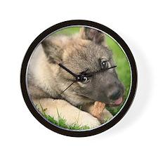 Norwegian elkhound puppy Wall Clock