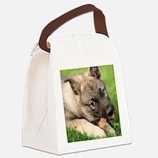 Norwegian elkhound puppy Canvas Lunch Bag