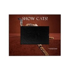 Show Cat Calendar Picture Frame