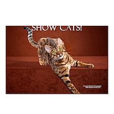 Show Cat Calendar Postcards (Package of 8)