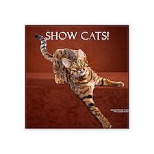 """Show Cat Calendar Square Sticker 3"""" x 3"""""""
