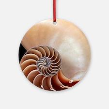Nautilus shell Round Ornament