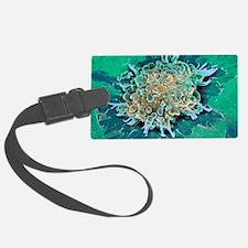 Cancer cell apoptosis, SEM Luggage Tag