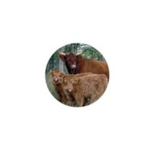 Two highland calves with mama cow Mini Button