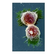 Cancer cells Postcards (Package of 8)