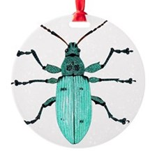 Nettle weevil Ornament